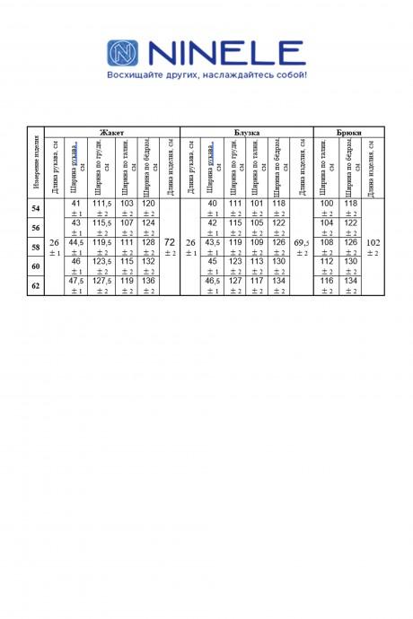Нинель Шик 5862